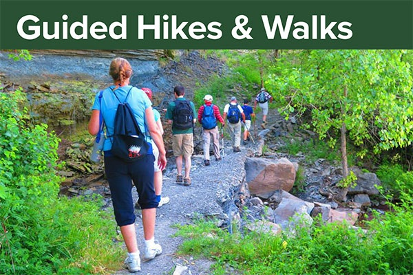 Guided Hikes and walks