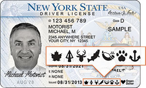 New York State DMV Photo Issued Document